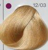 Londacolor 12/03 специальный блонд натурально-золотистый